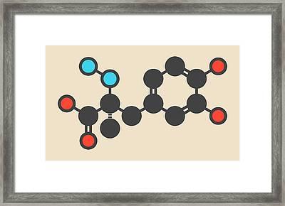 Carbidopa Parkinson's Drug Molecule Framed Print