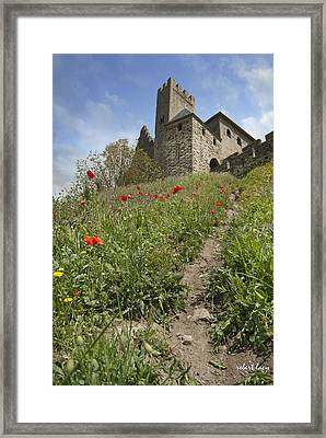Carcassonne Poppies Framed Print by Robert Lacy