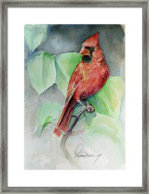 Cardinal #1 Framed Print