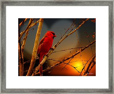 Cardinal At Sunset Valentine Framed Print