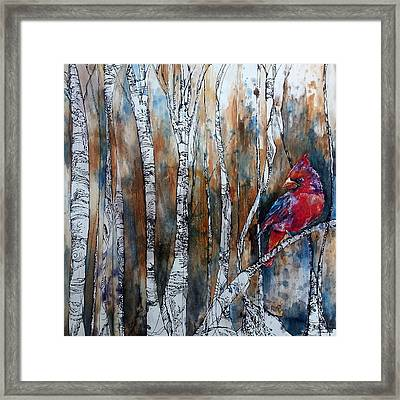 Cardinal In Birch Tree Forest Framed Print