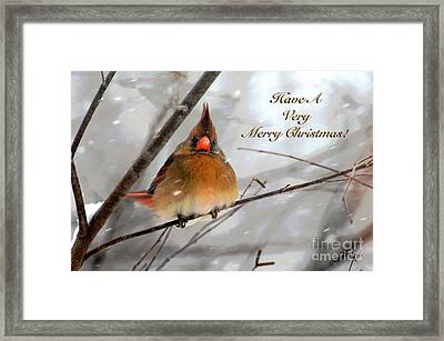 Cardinal In Snow Christmas Card Framed Print by Lois Bryan
