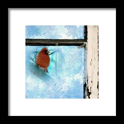 Windowpane Framed Prints