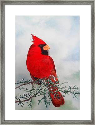 Framed Print featuring the painting Cardinal by Laurel Best