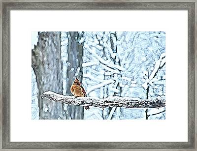 Cardinal No Mate To Keep Warm Framed Print by Randall Branham