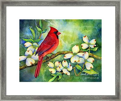 Cardinal On Dogwood Framed Print by Hailey E Herrera