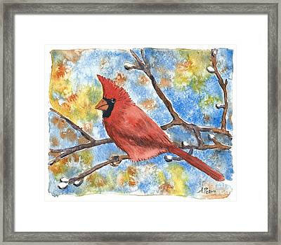Cardinal Rule Framed Print