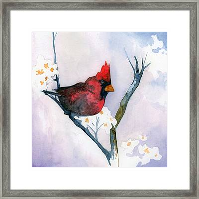 Cardinal Framed Print