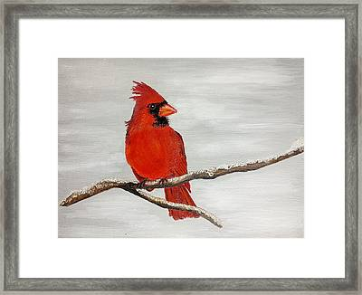 Cardinal Framed Print by Valorie Cross