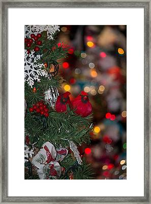 Framed Print featuring the photograph Cardinals At Christmas by Patricia Babbitt