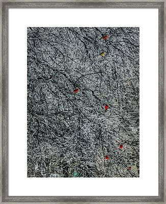 Cardinals In An Ice Storm 001 Framed Print by Lance Vaughn