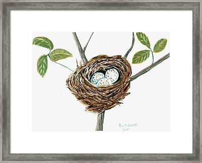 Cardinal's Nest Framed Print by Richard Goohs