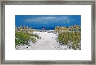 Carefree Days By The Sea Framed Print