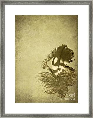 Careworn Framed Print