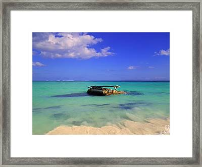 Framed Print featuring the photograph Caribbean Colors  by Eti Reid