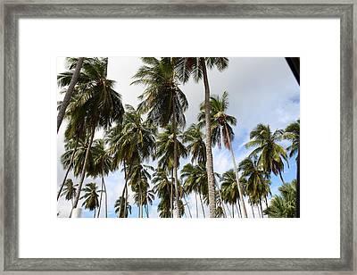 Caribbean Cruise - Barbados - 121280 Framed Print