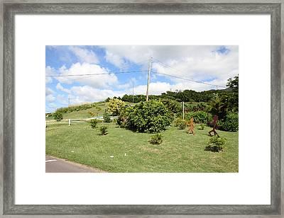 Caribbean Cruise - St Kitts - 1212149 Framed Print by DC Photographer