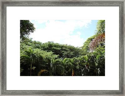 Caribbean Cruise - St Kitts - 1212192 Framed Print
