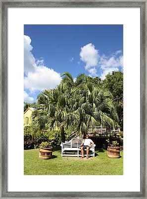 Caribbean Cruise - St Kitts - 1212218 Framed Print