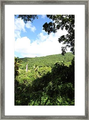 Caribbean Cruise - St Kitts - 1212224 Framed Print by DC Photographer