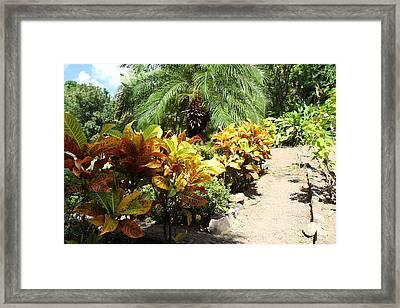 Caribbean Cruise - St Kitts - 121224 Framed Print by DC Photographer