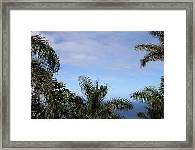 Caribbean Cruise - St Thomas - 1212229 Framed Print by DC Photographer