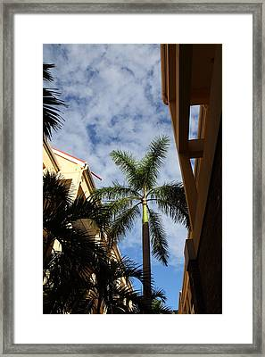 Caribbean Cruise - St Thomas - 121239 Framed Print by DC Photographer