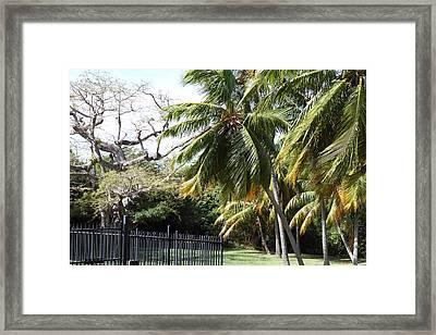 Caribbean Cruise - St Thomas - 121262 Framed Print by DC Photographer