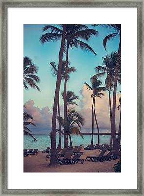 Caribbean Dreams Framed Print by Laurie Search