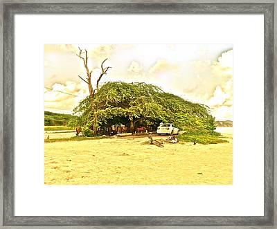 Caribbean Hut Framed Print by Amanda Just