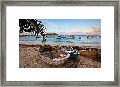 Caribbean Morning Framed Print by Patrick Downey