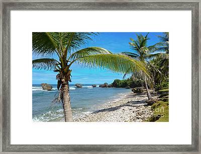 Caribbean Paradise Framed Print by Karen English