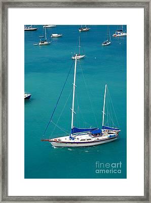 Caribbean Sailboat Framed Print by Amy Cicconi