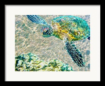Caribbean Mixed Media Framed Prints