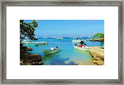 Caribbean Shore Framed Print by Iryna Goodall