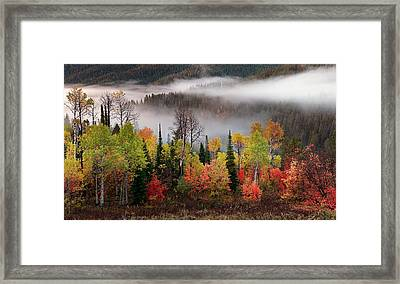 Caribou Canyon Framed Print by Leland D Howard