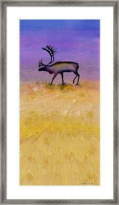 Caribou On The Tundra 2 Framed Print by Carolyn Doe