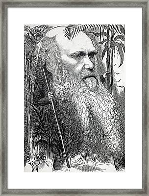 Caricature Of Charles Darwin Framed Print by Paul D Stewart