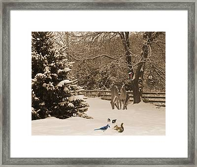Caring. Framed Print by Kelly Nelson