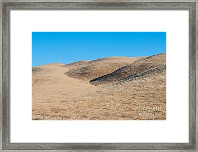 Carizzo Plains Nm  2-9647 Framed Print by Stephen Parker