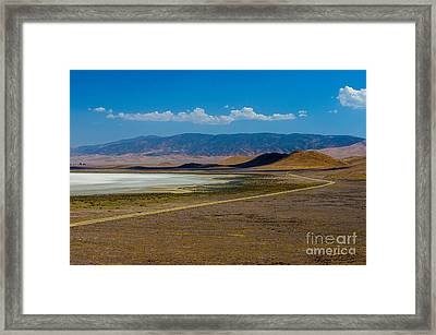 Carizzo Plains Nm  5-9656 Framed Print by Stephen Parker