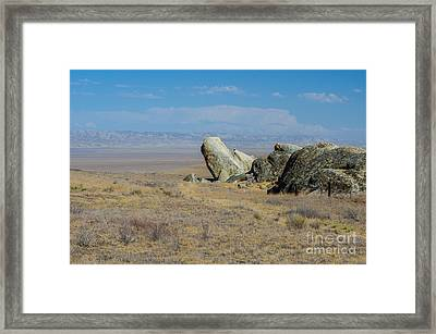 Carizzo Plains Nm  5-9657 Framed Print by Stephen Parker