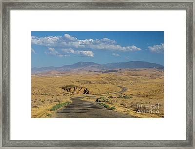 Carizzo Plains Nm  5-9664 Framed Print by Stephen Parker