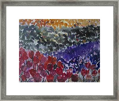 Carlsbad Flower Fields #4 Framed Print by Avonelle Kelsey