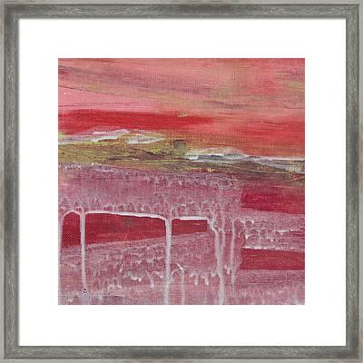 Carlsbad Ranunculus C2013 Framed Print by Paul Ashby