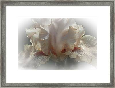 Framed Print featuring the photograph Carmel by Elaine Teague