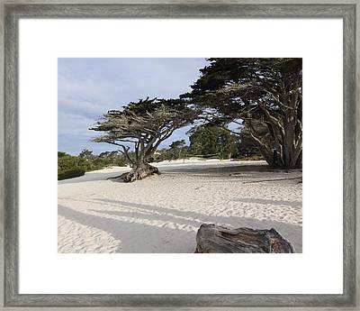 Framed Print featuring the photograph Carmel by Kandy Hurley
