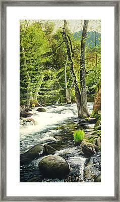 Carmel River Upper Watershed Framed Print by Logan Parsons