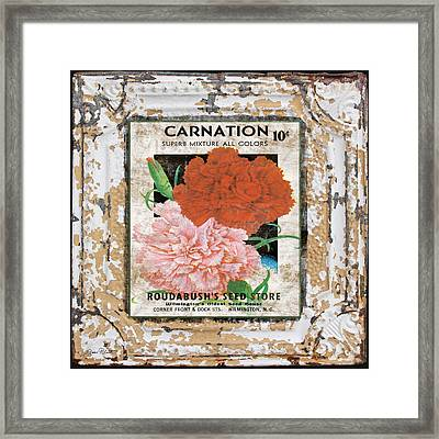 Carnation On Vintage Tin Framed Print by Jean Plout