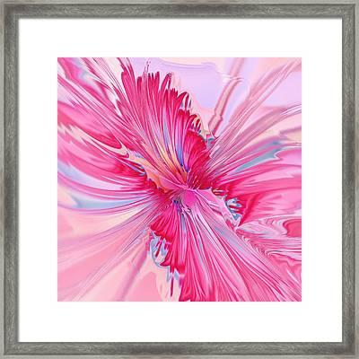 Carnation Pink Framed Print by Anastasiya Malakhova